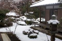 溶け始めていた雪の庭