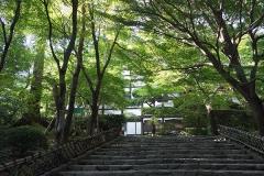 龍安寺の建物の前