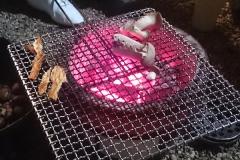 炭のきれいな炎
