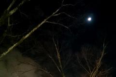 寒空に月の夜