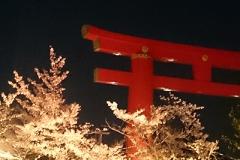 平安神宮の鳥居もちょっと幻想的
