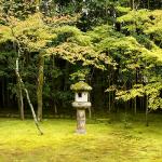   大徳寺(高桐院)   Daitoku-ji Temple (Koto-in)