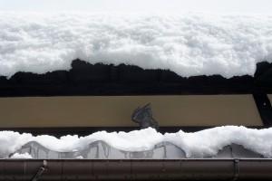 屋根の上の鍾馗さん